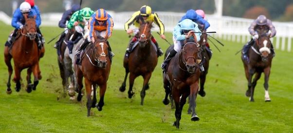 Horse betting tips facebook marketing boavista vs academica betting expert foot